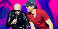 2014_Enrique_Pitbull_Thumb.JPG