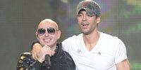 2015_Enrique_Pitbull_Thumb.jpg
